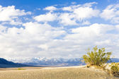Stovepipe Wells sand dunes — Stock Photo