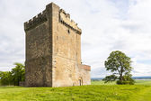 Clackmannan Tower — Stock Photo