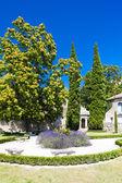 レ ・ ボー ・ ド ・ プロヴァンスの庭 — ストック写真