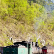 Stock Photo: Steam locomotive, delivery point in Oskova, Bosniand Hercegovi