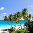 Bottom Bay, Barbados, Caribbean — Stock Photo #36412783