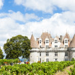 Monbazillac Castle with vineyard, Aquitaine, France — Stock Photo #37372945