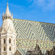 Stephansdom Cathedral, Vienna, Austria — Stock Photo #37373225