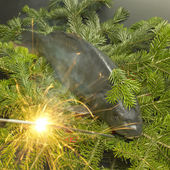 Czech Christmas tradition (Christmas carp) — Stock Photo