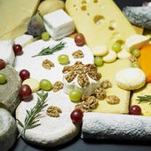 Cheese still life with fruit — Stock Photo