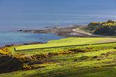 Krajobraz w pobliżu helmsdale, wyżyn Szkocji — Zdjęcie stockowe