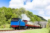 Buhar tren, göl ve haverthwaite demiryolu, cumbria, i̇ngiltere — Stok fotoğraf