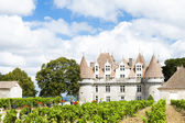 Monbazillac Castle with vineyard, Aquitaine, France — Stock Photo
