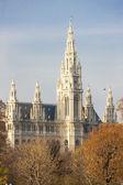 ウィーン市庁舎、オーストリア — ストック写真
