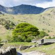 Landscape of Lake District, Cumbria, England — Stock Photo #38333971