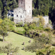 Stock Photo: Ruins of Sils Castle, canton Graubunden, Switzerland