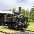 Steam locomotive — Stock Photo #39671361