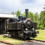 Steam locomotive  — Stock Photo #39671361