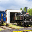 Steam locomotive in depot — Stock Photo #41117417