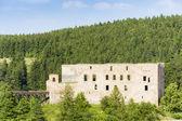 Ruins of Krakovec Castle, Czech Republic — Stock Photo