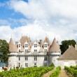 Monbazillac Castle — Stock Photo #41203315