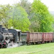 Stock Photo: Steam freight train