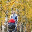 Womwith pram on walk — Stock Photo #41206403