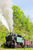 Steam freight train — Stock Photo
