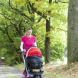 Womwith pram — Stock Photo #41497587