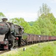 Stock Photo: Steam freight train in Tuzlregion