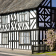 Stock Photo: Half timbered house