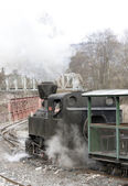 CKD steam locomotive — Stock fotografie