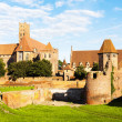 Malbork Castle — Stock Photo #42733257