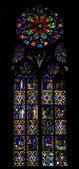 Interieur van de kathedraal notre dame — Stockfoto