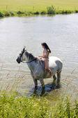 Equestrian on horseback riding through water — Stockfoto