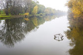 Small Danube river in autumn — Stock Photo
