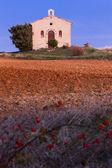 Chapelle avec champ lavande — Photo