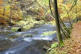 Metuje river in autumn — Stock Photo
