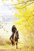 верховой езды на лошадях в осенней природы — Стоковое фото