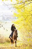 Paardensport op de rug van een paard in de herfst natuur — Stockfoto