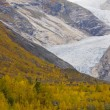 Nigardsbreen Glacier — Stock Photo #43955451