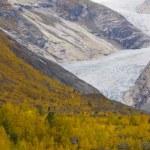 Nigardsbreen Glacier — Stock Photo