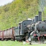Steam freight train — Stock Photo #43955491