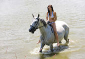 Equestrian on horseback — Stock Photo