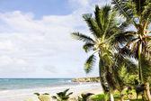 Skeete's Bay, Barbados, Caribbean — Stock Photo