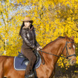 Equestrian with her horse — Stock Photo