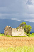 Field with a ruin of house and tree, Plateau de Valensole, Prove — Stock Photo