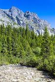 Mengusovska Valley, Vysoke Tatry (High Tatras), Slovakia — Stock Photo