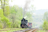 Narrow gauge railway — Stock Photo