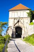 Sigismund''s Gate — Stockfoto