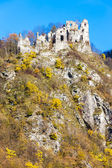 Ruins of castle called Stary hrad near Strecno, Slovakia — Stock Photo