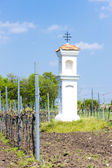 God''s torture with vineyard near Palava, Czech Republic — Foto de Stock