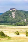 Tocnik castle, Czech Republic — Stock Photo