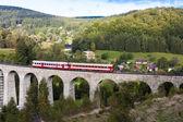 Engine carriage on viaduct Novina, Krystofovo Valley, Czech Repu — Stock Photo