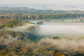 Landscape with autumnal forest in fog — Stock Photo